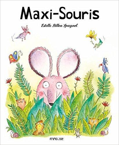 Maxi-Souris 1