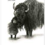 Mon bison (2018)